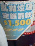 040808_1759001.jpg