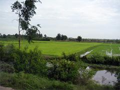 thailandfarm-01