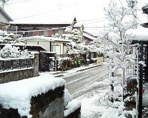 snowfall20031220.jpg